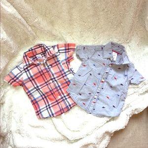 Carter's 3 mo Polo shirts